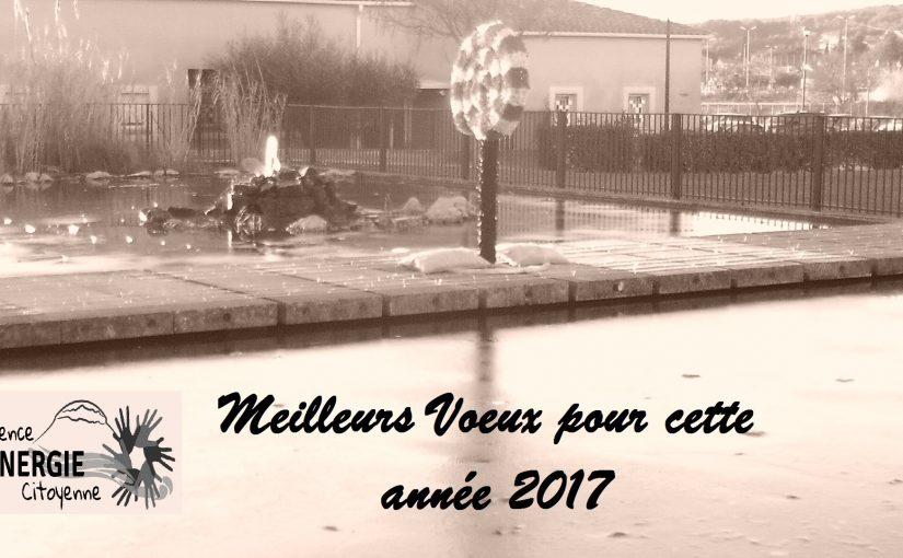 Meilleurs Vœux pour l'année 2017